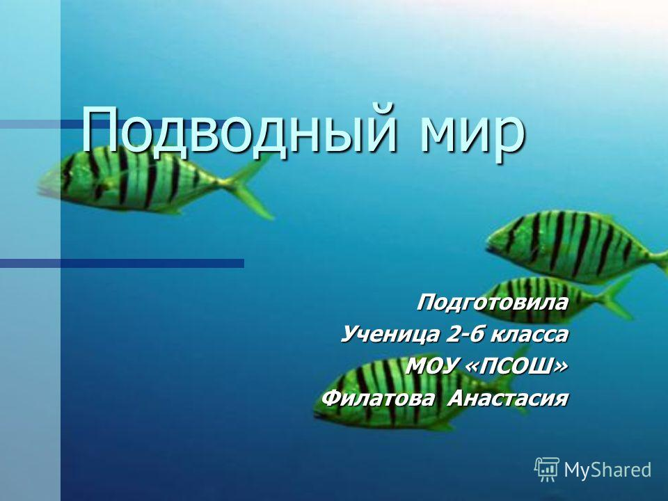 Подводный мир Подготовила Ученица 2-б класса МОУ «ПСОШ» Филатова Анастасия