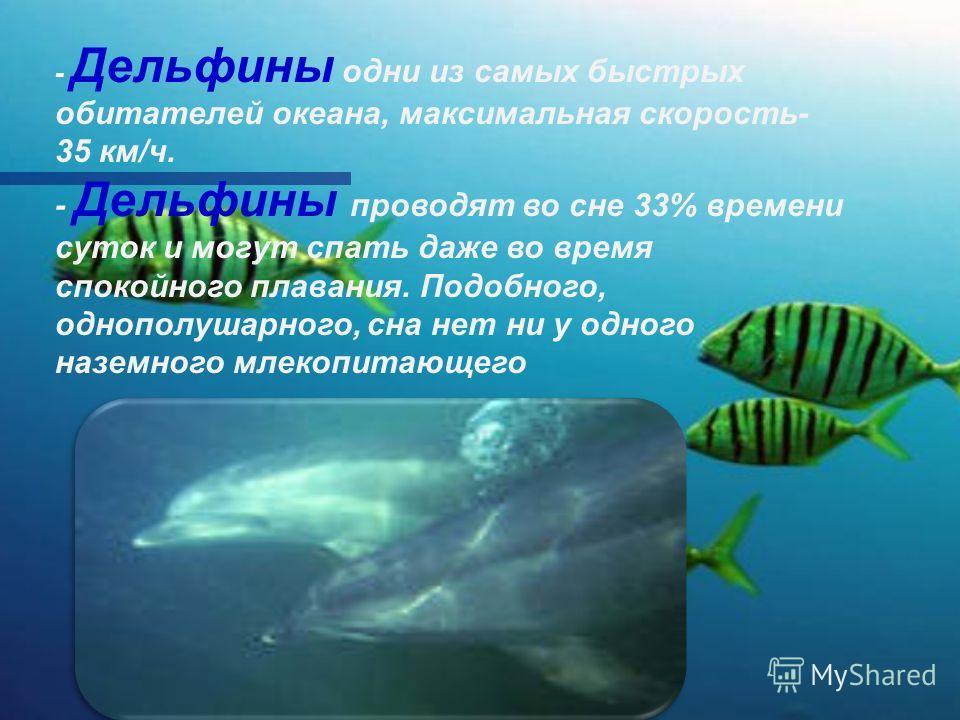 - Дельфины одни из самых быстрых обитателей океана, максимальная скорость- 35 км/ч. - Дельфины проводят во сне 33% времени суток и могут спать даже во время спокойного плавания. Подобного, однополушарного, сна нет ни у одного наземного млекопитающего