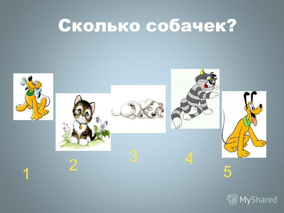 Сколько собачек? 1 2 3 4 5