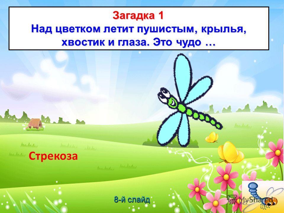 Загадка 1 Над цветком летит пушистым, крылья, хвостик и глаза. Это чудо … Стрекоза 8-й слайд