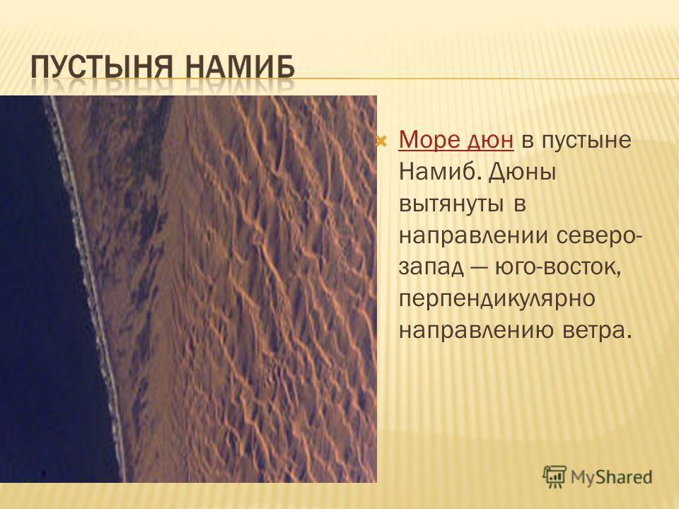 Море дюн в пустыне Намиб. Дюны вытянуты в направлении северо- запад юго-восток, перпендикулярно направлению ветра. Море дюн