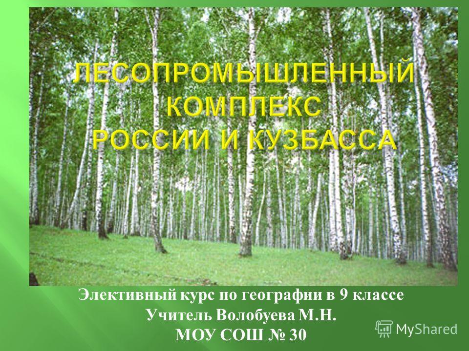 Элективный курс по географии в 9 классе Учитель Волобуева М. Н. МОУ СОШ 30