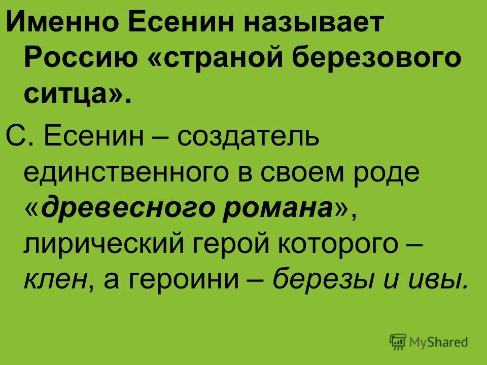 Именно Есенин называет Россию «страной березового ситца». С. Есенин – создатель единственного в своем роде «древесного романа», лирический герой которого – клен, а героини – березы и ивы.