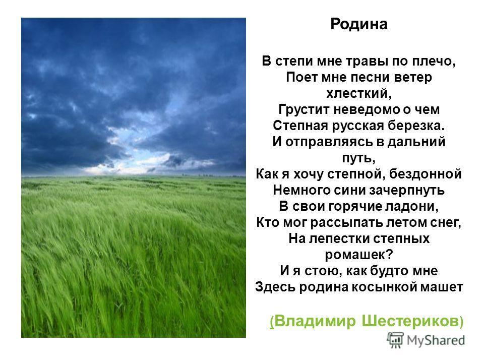 Родина В степи мне травы по плечо, Поет мне песни ветер хлесткий, Грустит неведомо о чем Степная русская березка. И отправляясь в дальний путь, Как я хочу степной, бездонной Немного сини зачерпнуть В свои горячие ладони, Кто мог рассыпать летом снег,
