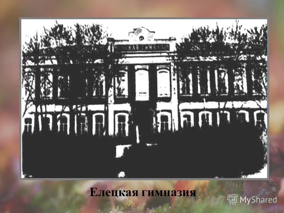 Елецкая гимназия