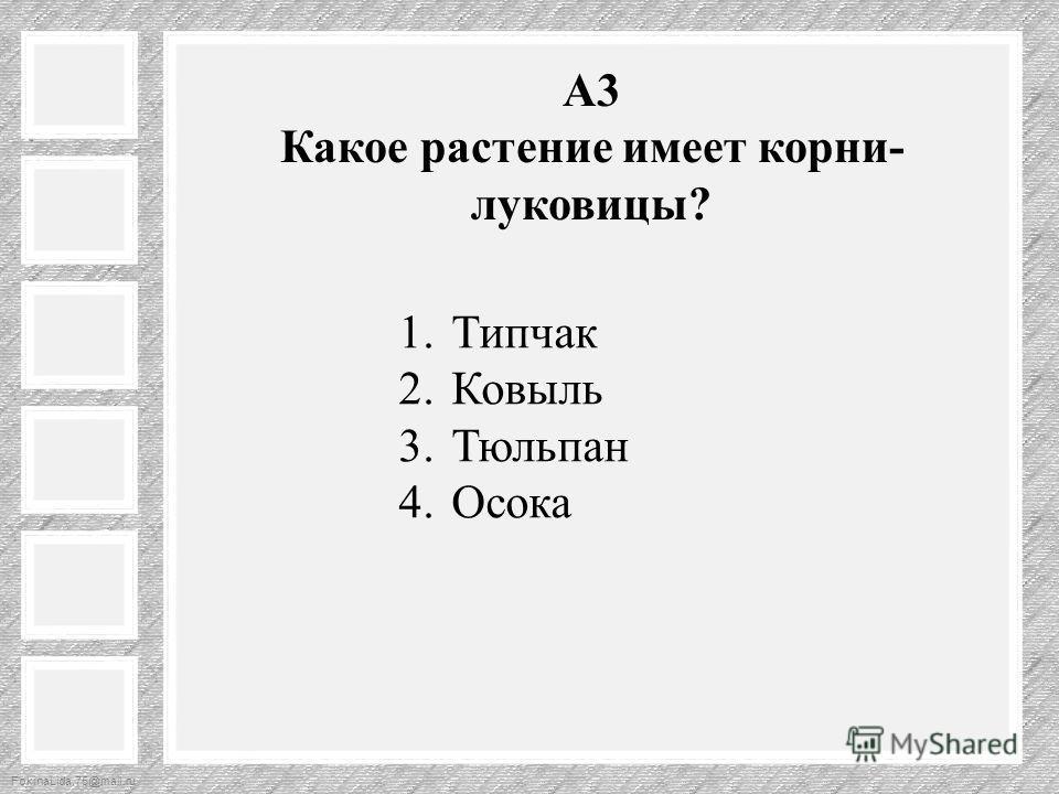 FokinaLida.75@mail.ru А3 Какое растение имеет корни- луковицы? 1. Типчак 2. Ковыль 3. Тюльпан 4.Осока