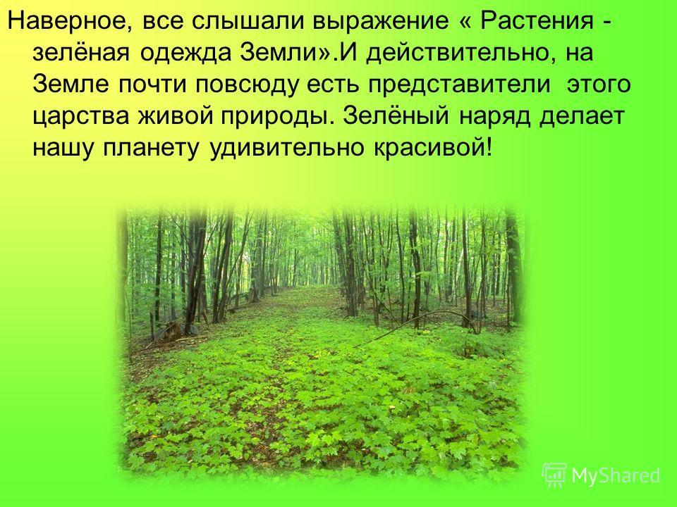 Наверное, все слышали выражение « Растения - зелёная одежда Земли».И действительно, на Земле почти повсюду есть представители этого царства живой природы. Зелёный наряд делает нашу планету удивительно красивой!