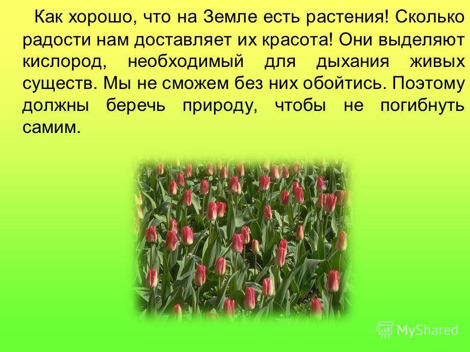 Как хорошо, что на Земле есть растения! Сколько радости нам доставляет их красота! Они выделяют кислород, необходимый для дыхания живых существ. Мы не сможем без них обойтись. Поэтому должны беречь природу, чтобы не погибнуть самим.