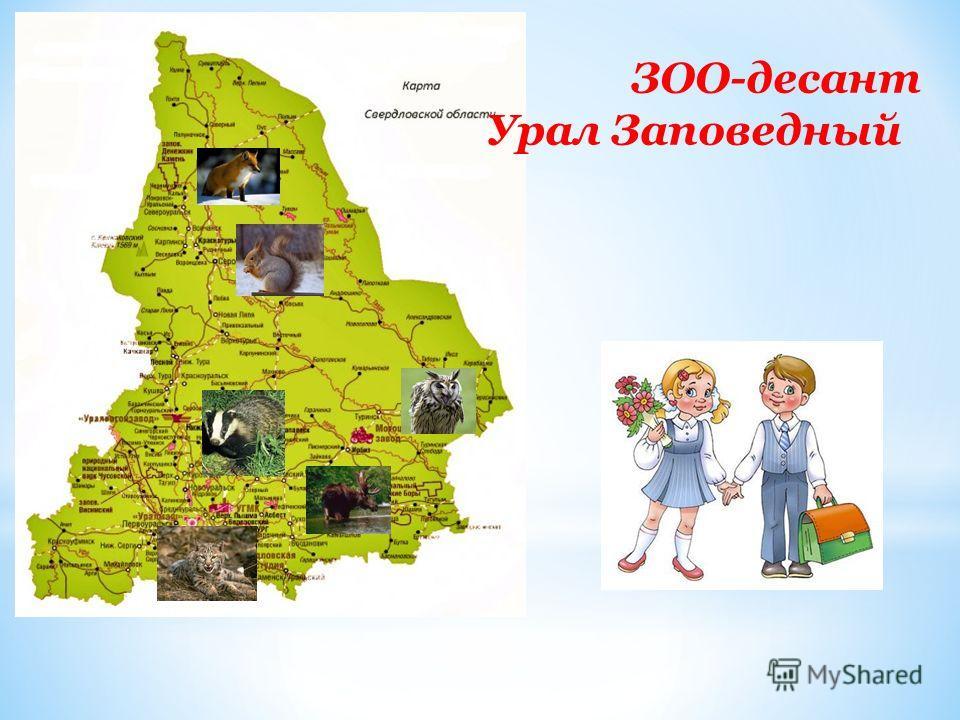ЗОО-десант Урал Заповедный