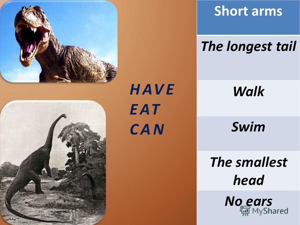 HAVE EAT CAN Short arms The longest tail Walk Swim The smallest head No ears