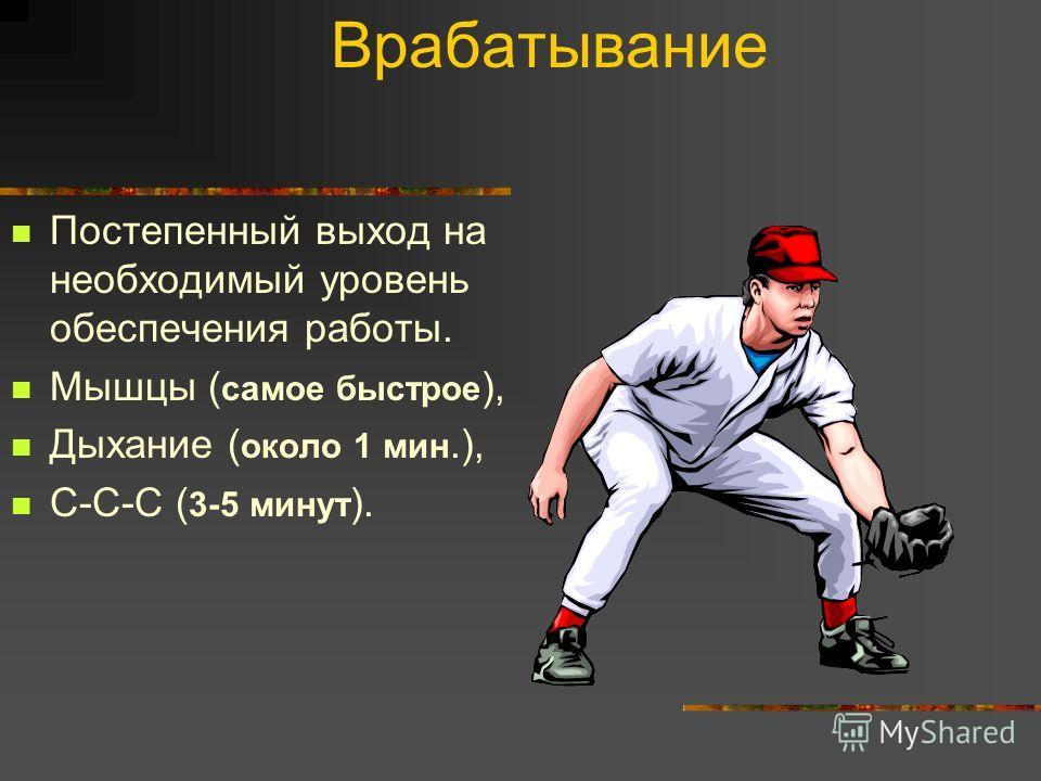 Врабатывание Постепенный выход на необходимый уровень обеспечения работы. Мышцы ( самое быстрое ), Дыхание ( около 1 мин.), С-С-С ( 3-5 минут ).