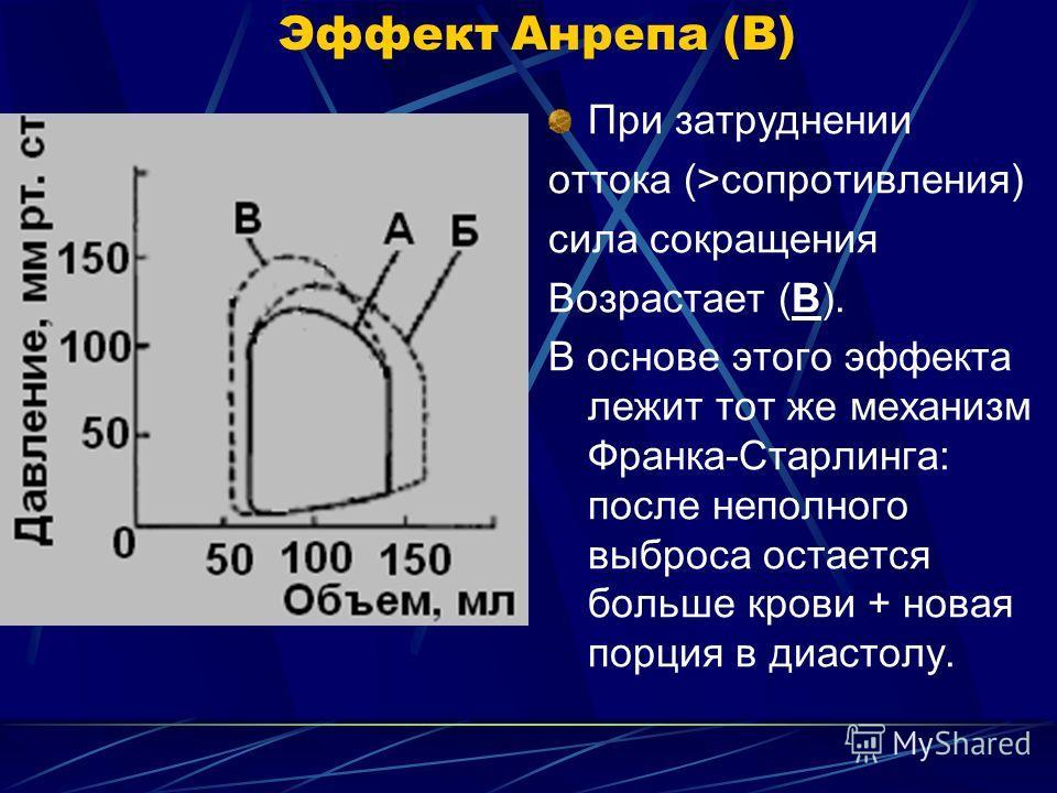 Эффект Анрепа (В) При затруднении оттока (>сопротивления) сила сокращения Возрастает (В). В основе этого эффекта лежит тот же механизм Франка-Старлинга: после неполного выброса остается больше крови + новая порция в диастолу.
