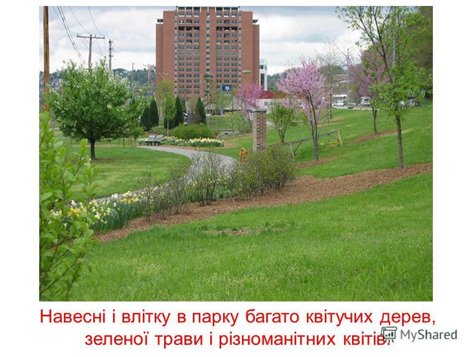 Багато людей полюбляють гуляти в парку, де є алеї і ослони для тих, хто хочете посидіти на свіжому повітрі.