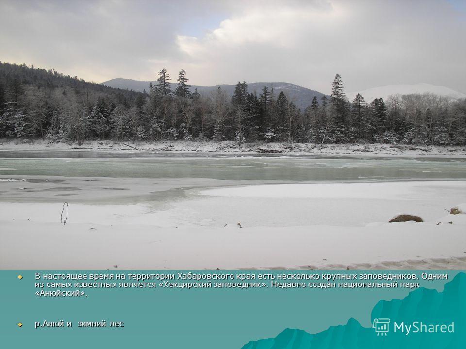 В настоящее время на территории Хабаровского края есть несколько крупных заповедников. Одним из самых известных является «Хекцирский заповедник». Недавно создан национальный парк «Анюйский». В настоящее время на территории Хабаровского края есть неск