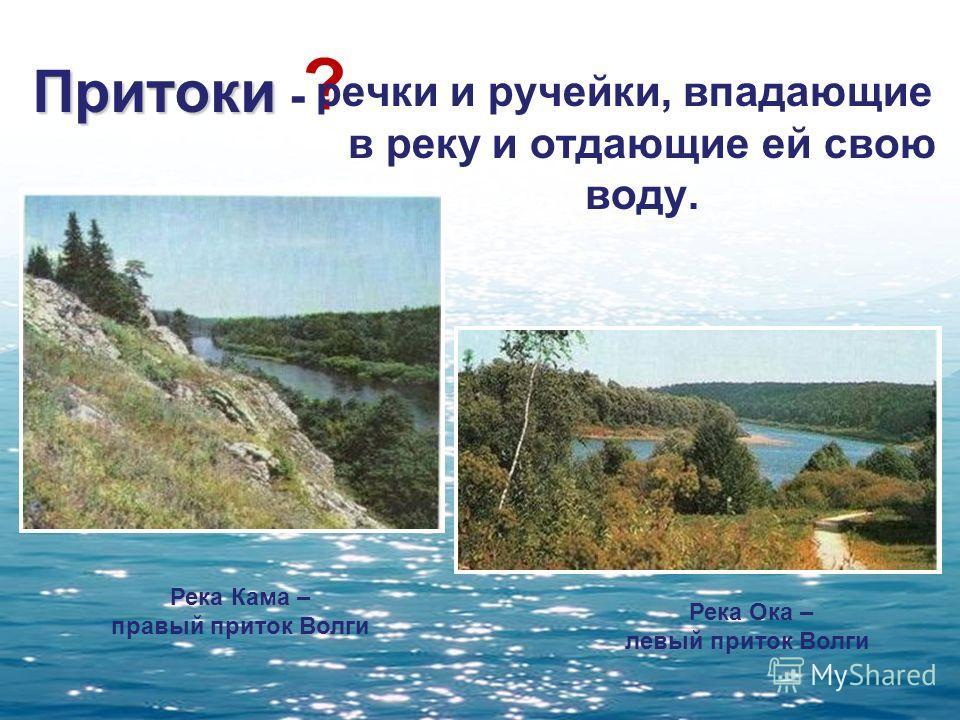 Притоки Притоки - ? речки и ручейки, впадающие в реку и отдающие ей свою воду. Река Кама – правый приток Волги Река Ока – левый приток Волги