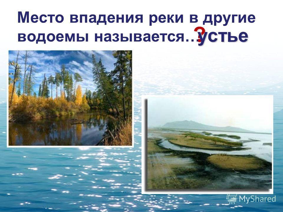 Место впадения реки в другие водоемы называется… ? устье
