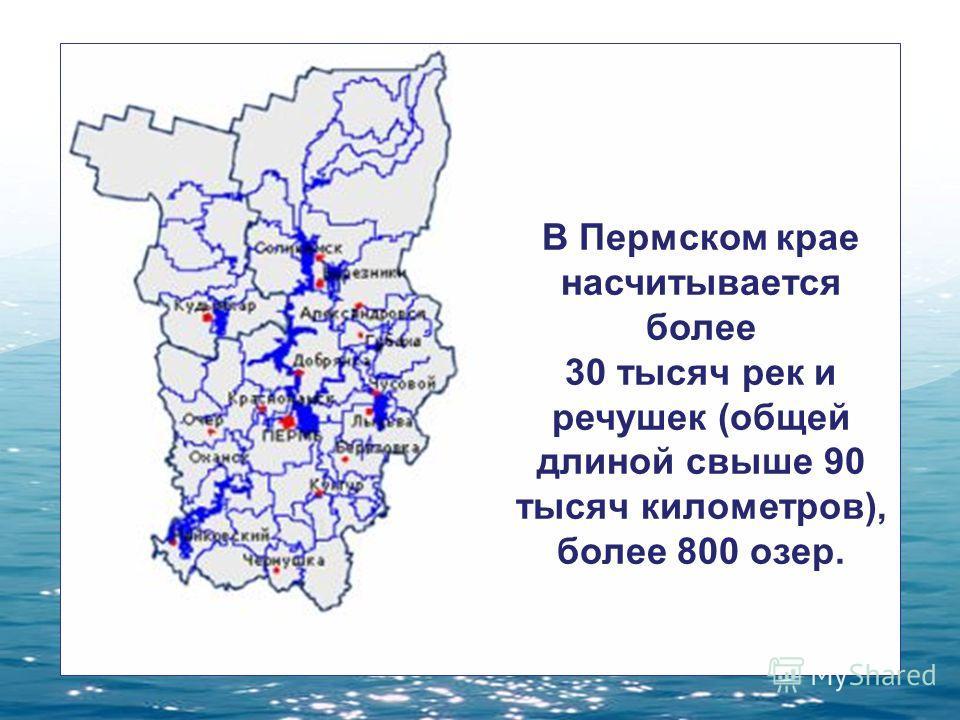 В Пермском крае насчитывается более 30 тысяч рек и речушек (общей длиной свыше 90 тысяч километров), более 800 озер.