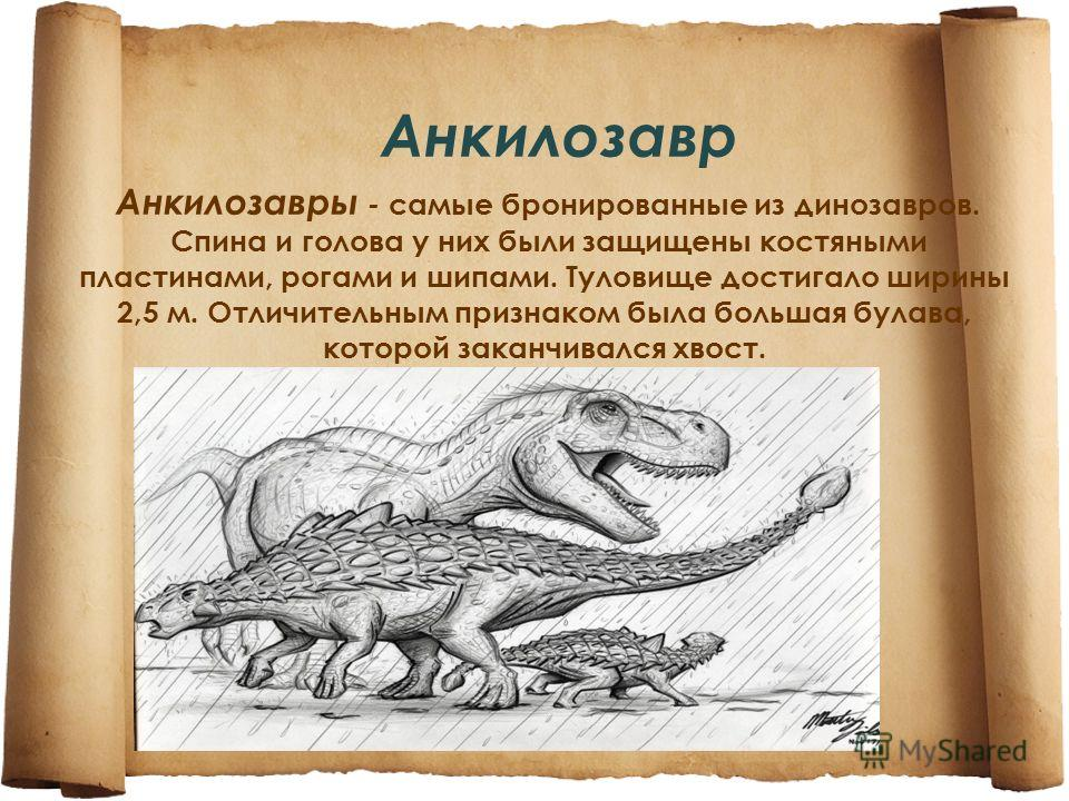 Анкилозавр Анкилозавры - самые бронированные из динозавров. Спина и голова у них были защищены костяными пластинами, рогами и шипами. Туловище достигало ширины 2,5 м. Отличительным признаком была большая булава, которой заканчивался хвост.