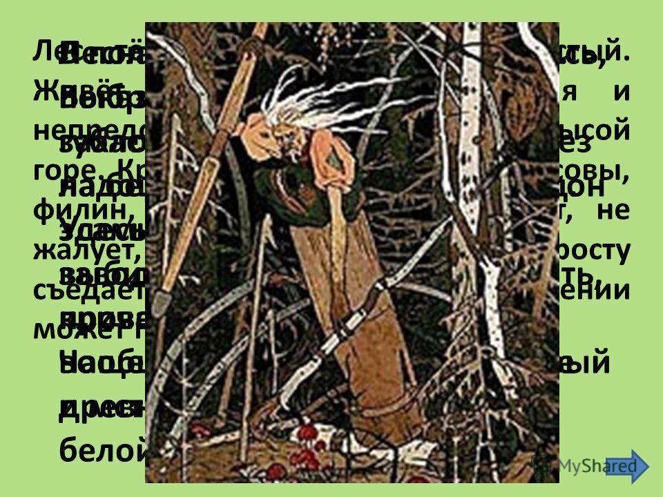 Куда мы попали? Не видно небес. Как страшно! Ведь это сказочный лес. Все тайны, загадки надо открыть, Чтоб злых колдунов их чар лишить.