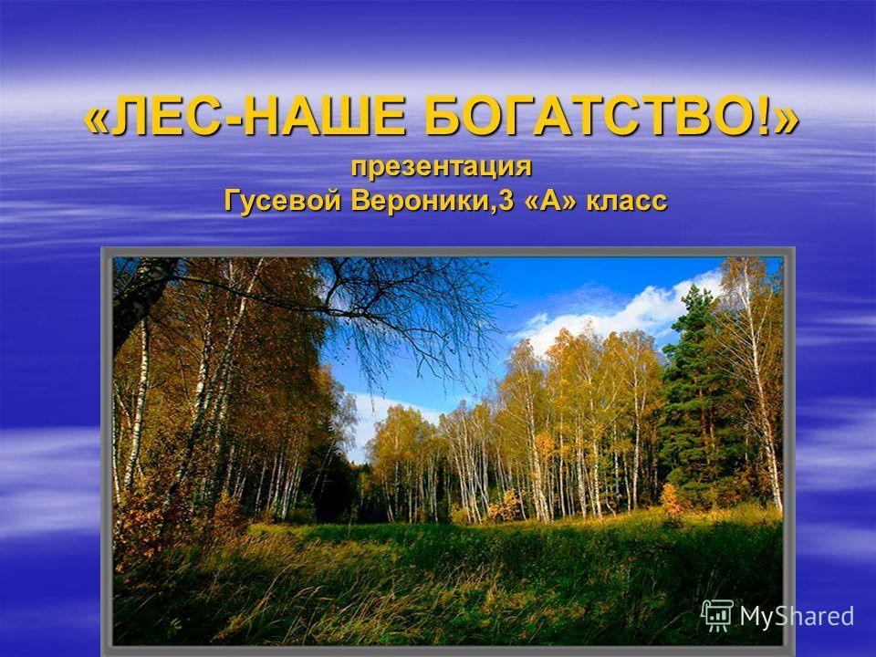 «ЛЕС-НАШЕ БОГАТСТВО!» презентация Гусевой Вероники,3 «А» класс