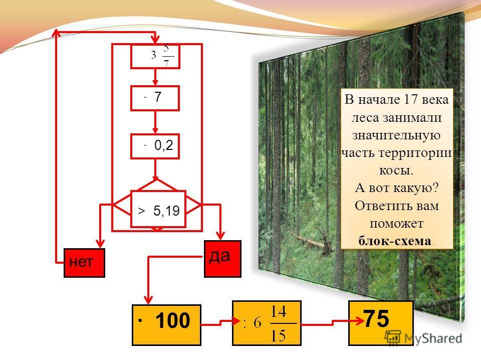 7 0,2 > 5,19 нет 100 да 75 В начале 17 века леса занимали значительную часть территории косы. А вот какую? Ответить вам поможет блок-схема.