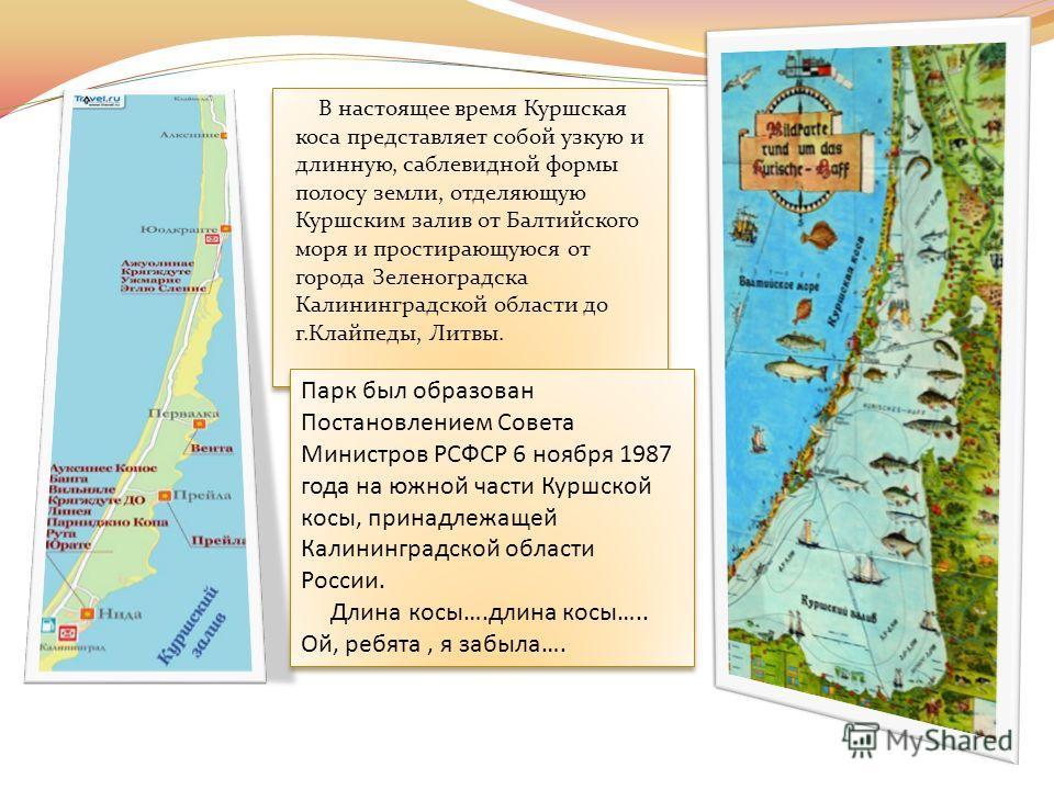 В настоящее время Куршская коса представляет собой узкую и длинную, саблевидной формы полосу земли, отделяющую Куршским залив от Балтийского моря и простирающуюся от города Зеленоградска Калининградской области до г.Клайпеды, Литвы. Парк был образова