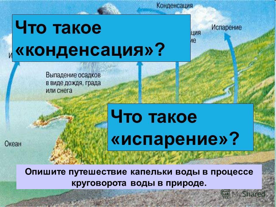 Что такое «испарение»? Что такое «конденсация»? Опишите путешествие капельки воды в процессе круговорота воды в природе.
