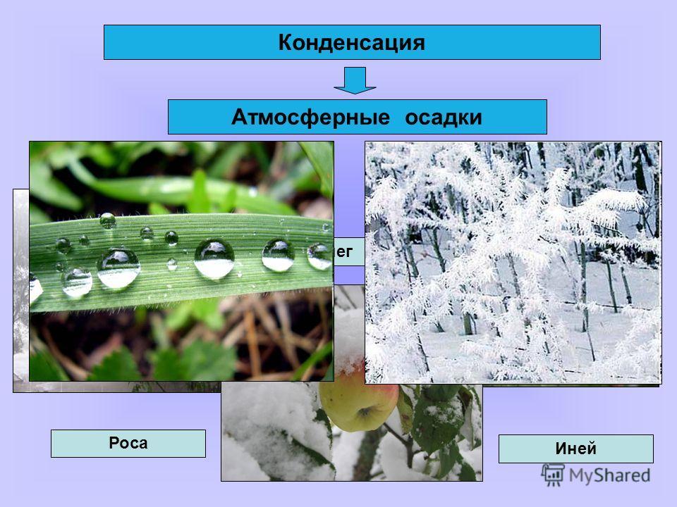 Конденсация Атмосферные осадки Дождь Град Снег Роса Иней