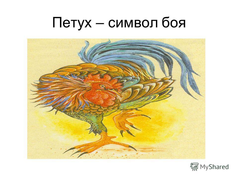 Петух – символ боя
