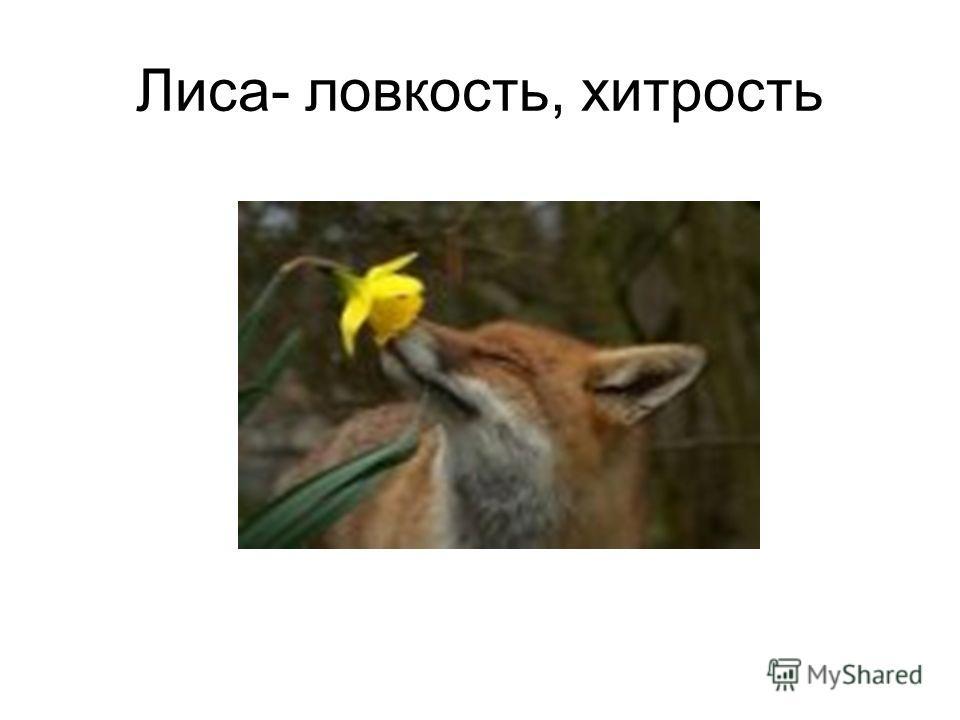 Лиса- ловкость, хитрость