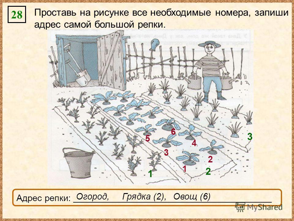 28 Проставь на рисунке все необходимые номера, запиши адрес самой большой репки. Адрес репки: _________________________________________________ 1 2 3 1 2 3 4 5 6 Огород,Грядка (2),Овощ (6)