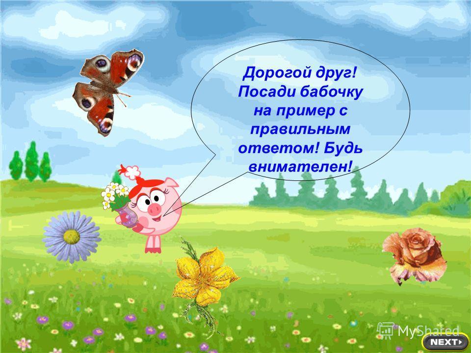 Дорогой друг! Посади бабочку на пример с правильным ответом! Будь внимателен!