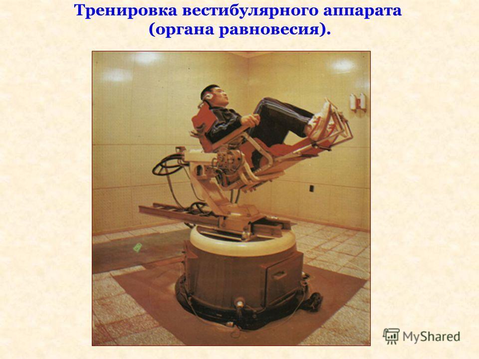 Тренировка вестибулярного аппарата (органа равновесия).