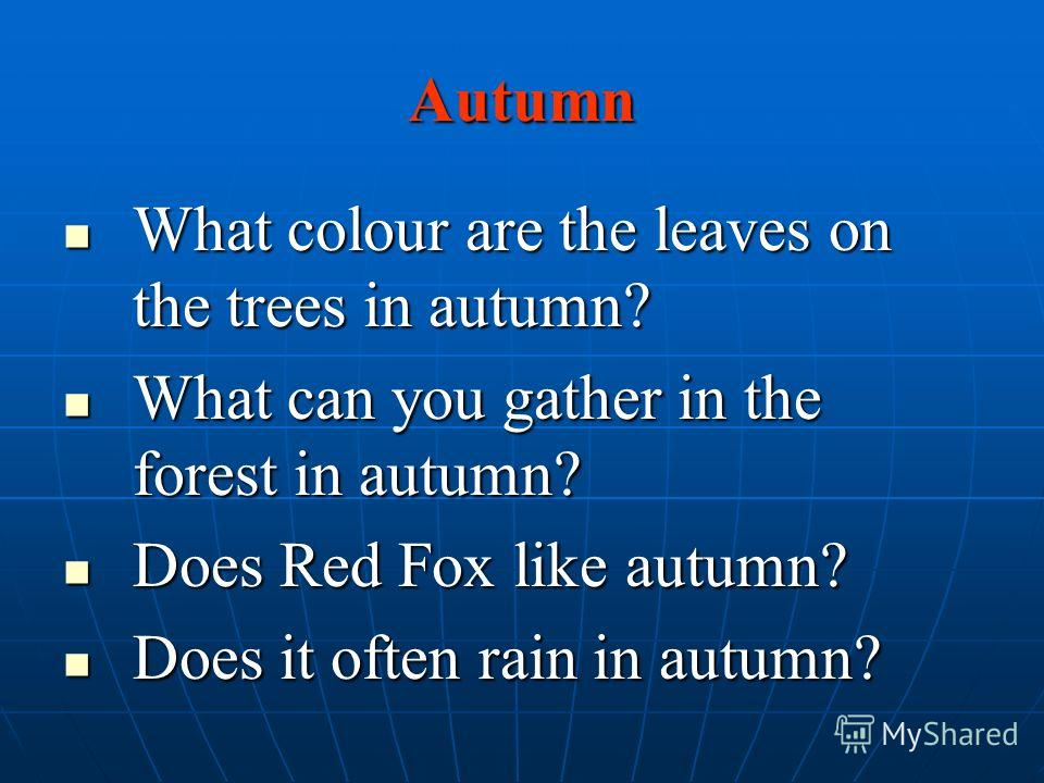 Autumn What colour are the leaves on the trees in autumn? What colour are the leaves on the trees in autumn? What can you gather in the forest in autumn? What can you gather in the forest in autumn? Does Red Fox like autumn? Does Red Fox like autumn?