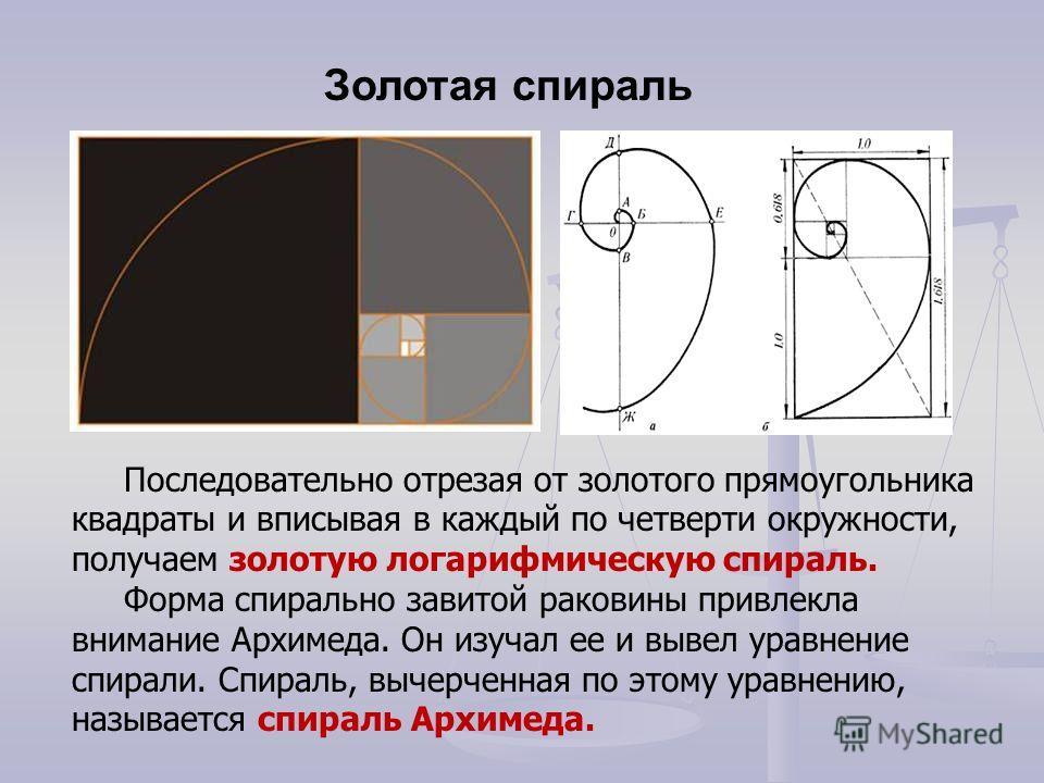 Последовательно отрезая от золотого прямоугольника квадраты и вписывая в каждый по четверти окружности, получаем золотую логарифмическую спираль. Форма спирально завитой раковины привлекла внимание Архимеда. Он изучал ее и вывел уравнение спирали. Сп