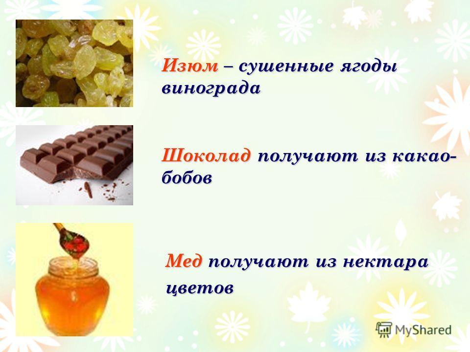 Мед получают из нектара цветов Изюм – сушенные ягоды винограда Шоколад получают из какао- бобов