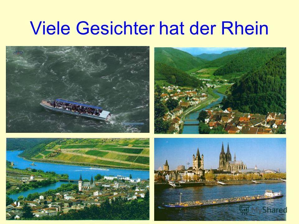 Viele Gesichter hat der Rhein