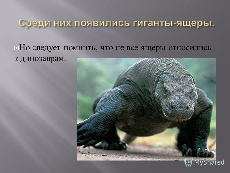 Но следует помнить, что не все ящеры относились к динозаврам.