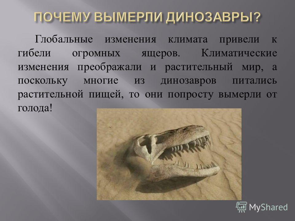 Глобальные изменения климата привели к гибели огромных ящеров. Климатические изменения преображали и растительный мир, а поскольку многие из динозавров питались растительной пищей, то они попросту вымерли от голода !