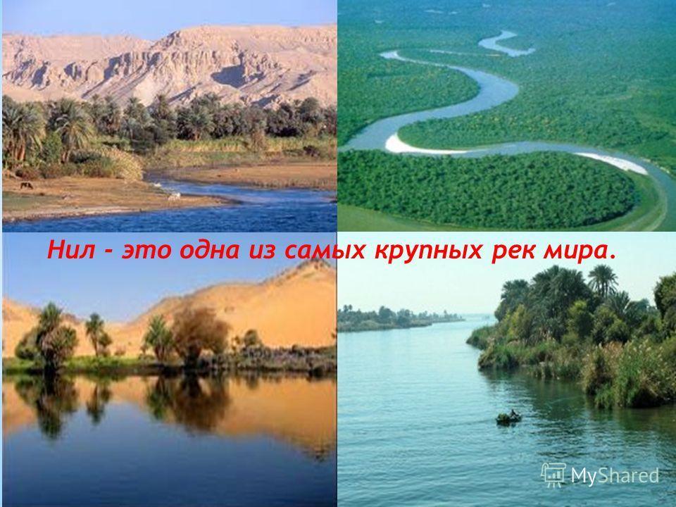 Нил - это одна из самых крупных рек мира.