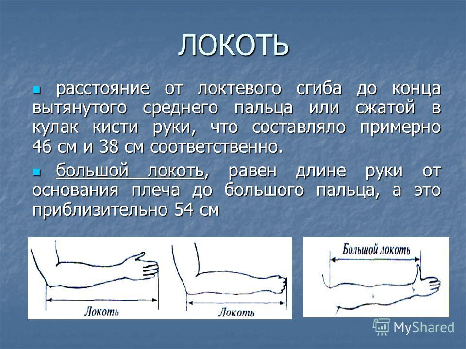 ЛОКОТЬ расстояние от локтевого сгиба до конца вытянутого среднего пальца или сжатой в кулак кисти руки, что составляло примерно 46 см и 38 см соответственно. расстояние от локтевого сгиба до конца вытянутого среднего пальца или сжатой в кулак кисти р