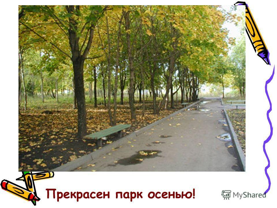 Прекрасен парк осенью!
