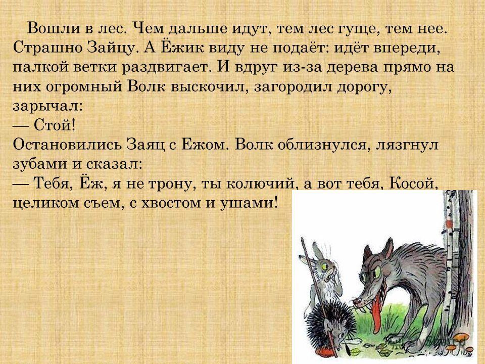 Вошли в лес. Чем дальше идут, тем лес гуще, тем нее. Страшно Зайцу. А Ёжик виду не подаёт: идёт впереди, палкой ветки раздвигает. И вдруг из-за дерева прямо на них огромный Волк выскочил, загородил дорогу, зарычал: Стой! Остановились Заяц с Ежом. Вол