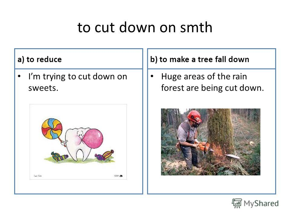 to cut down on smth a) to reduce Im trying to cut down on sweets. b) to make a tree fall down Huge areas of the rain forest are being cut down.