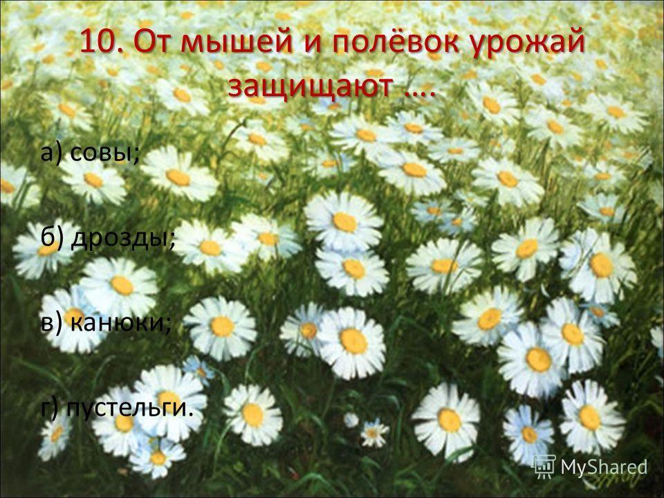 10. От мышей и полёвок урожай защищают …. а) совы; б) дрозды; в) канюки; г) пустельги.