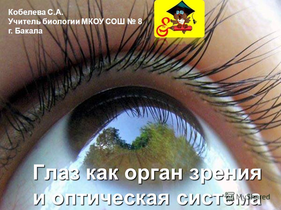 Глаз как орган зрения и оптическая система Кобелева С.А. Учитель биологии МКОУ СОШ 8 г. Бакала