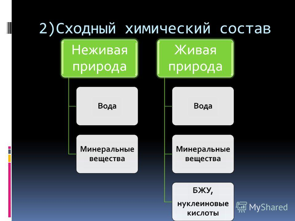 2)Сходный химический состав
