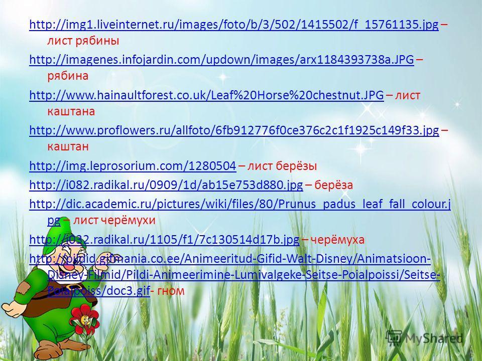 http://img1.liveinternet.ru/images/foto/b/3/502/1415502/f_15761135.jpghttp://img1.liveinternet.ru/images/foto/b/3/502/1415502/f_15761135. jpg – лист рябины http://imagenes.infojardin.com/updown/images/arx1184393738a.JPGhttp://imagenes.infojardin.com/