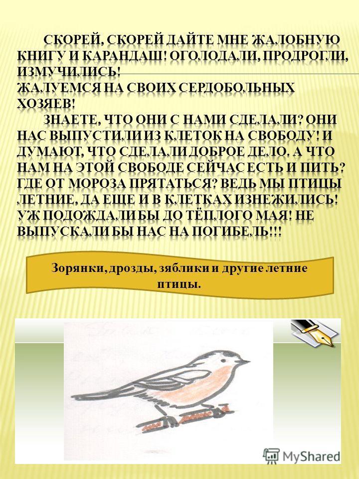 Зорянки, дрозды, зяблики и другие летние птицы.