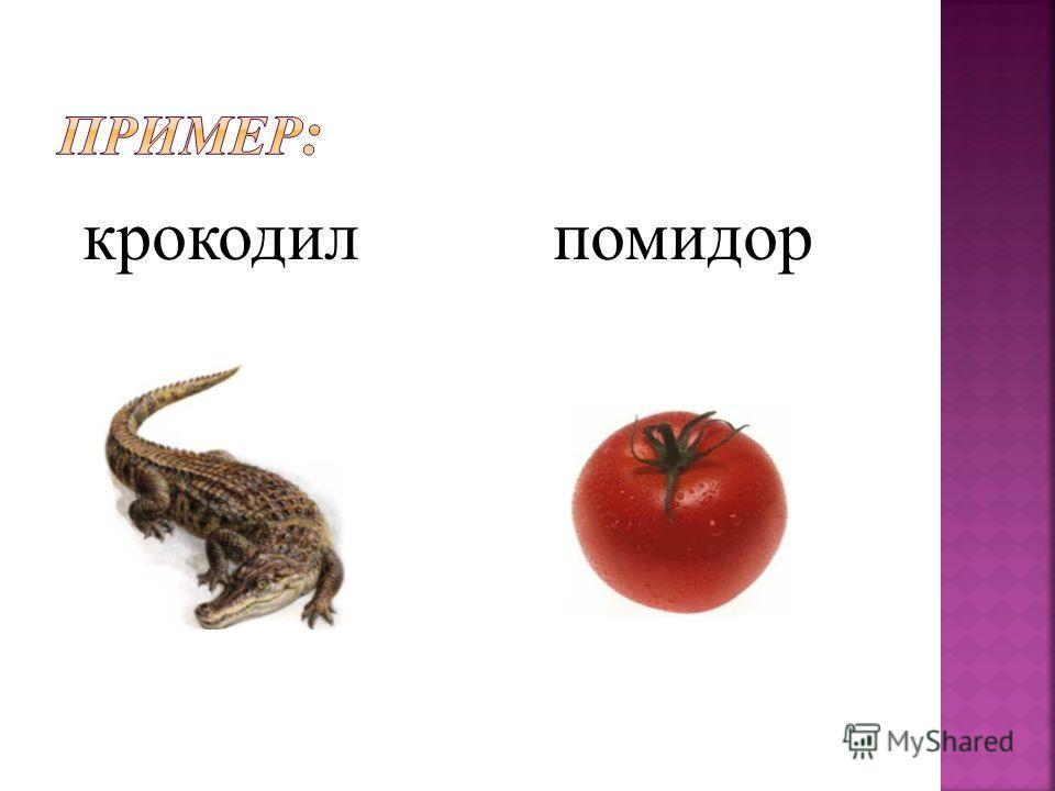 крокодилл помидор